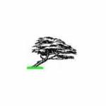Impianti Di Irrigazione Zona Loreto Milano – Pensare Verde